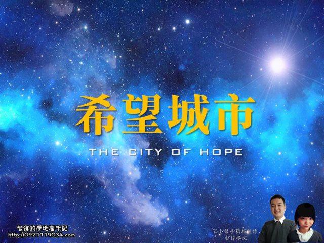蘆洲指標建案-希望城市